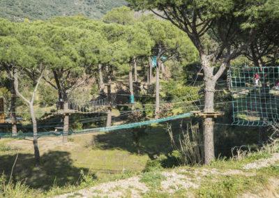 parc (4)